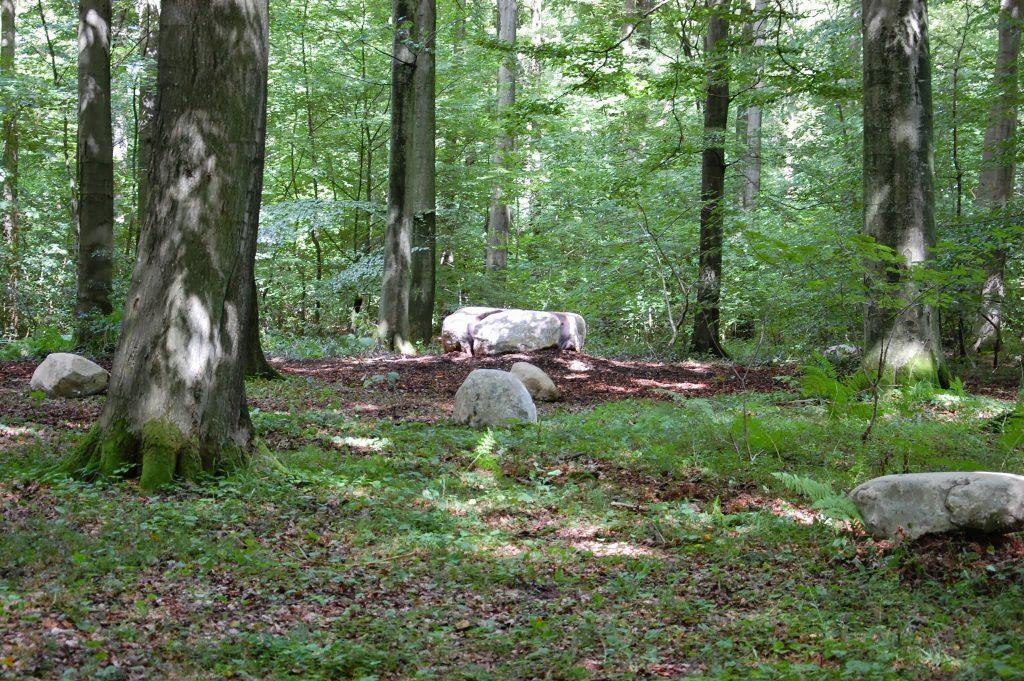 Der naturbelassene Waldfriedhof