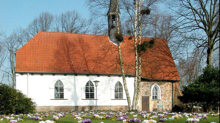 Kirche-Krokusse-2015